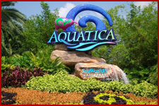 Seaworld Orlando Aquatica