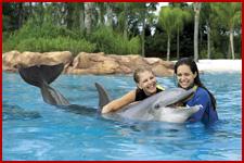 Seaworld Orlando Discovery Cove