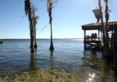 Windermere, FL